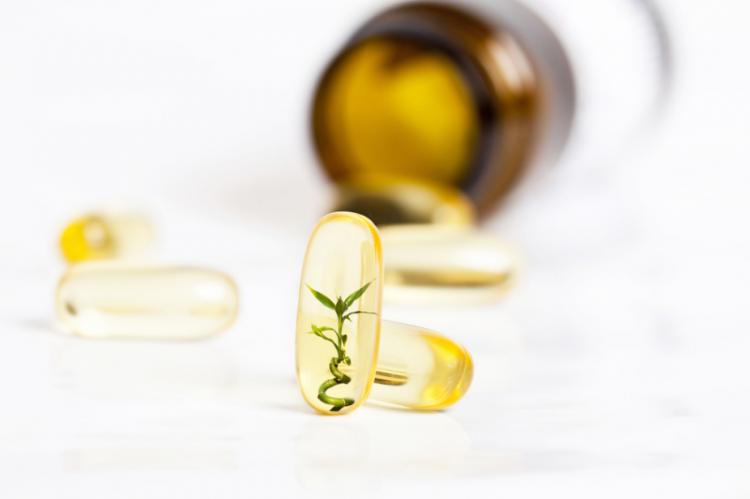 Rośliny od lat stosowane były w medycynie tradycyjnej. Z ich właściwości czerpiemy też współcześnie (fot. Shutterstock)