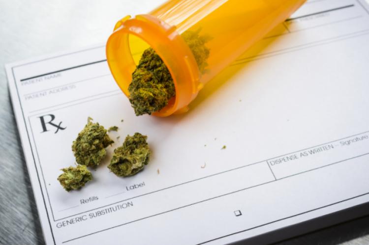 Aby zwiększyć dostęp do wiedzy teoretycznej i praktycznej w zastosowaniu surowca farmaceutycznego w porozumieniu z OIA Polish Institute of Medical Cannabis przygotuje też konferencje dla chętnych członków poszczególnych Izb (fot. Shutterstock)